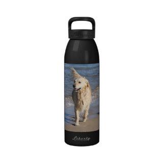 Amo perros perdigueros de oro botella de beber