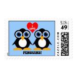 Amo pingüinos sello