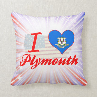 Amo Plymouth, Connecticut Cojin