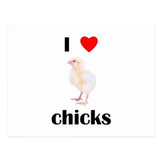 Amo polluelos tarjeta postal