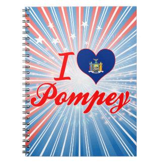 Amo Pompey, Nueva York Cuadernos