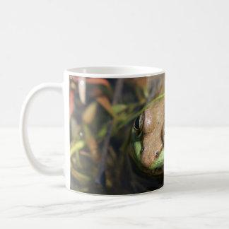 amo ranas taza clásica