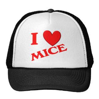 Amo ratones gorros