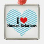 Amo relaciones humanas ornatos