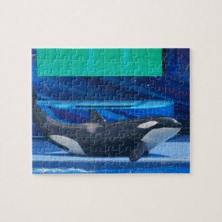 Amo rompecabezas de las orcas