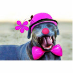 ¡Amo rosa! Esculturas Fotograficas