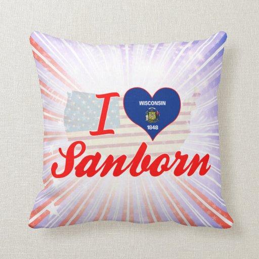 Amo Sanborn, Wisconsin Almohada