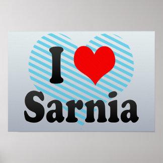 Amo Sarnia Canadá Poster