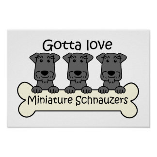 Amo Schnauzers miniatura Posters