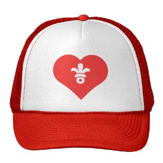 Amo símbolo fresco de los penachos del gorra