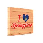 Amo Springfield, Mainea Impresión En Lienzo Estirada