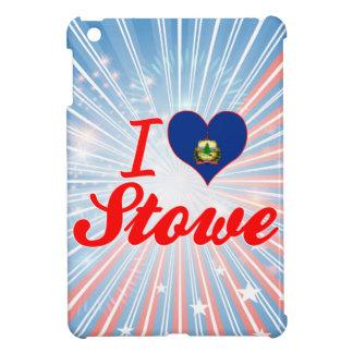 Amo Stowe Vermont