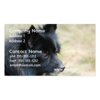 Amo tarjetas de visita de Pomeranians