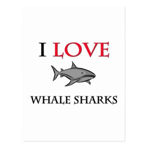 Amo tiburones de ballena tarjeta postal