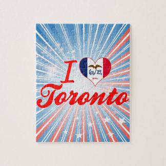 Amo Toronto, Iowa Puzzles