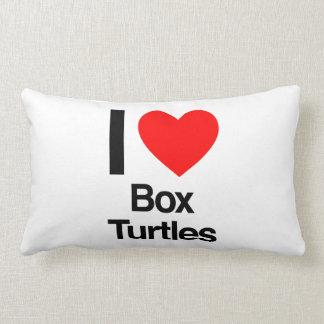 amo tortugas de caja almohadas