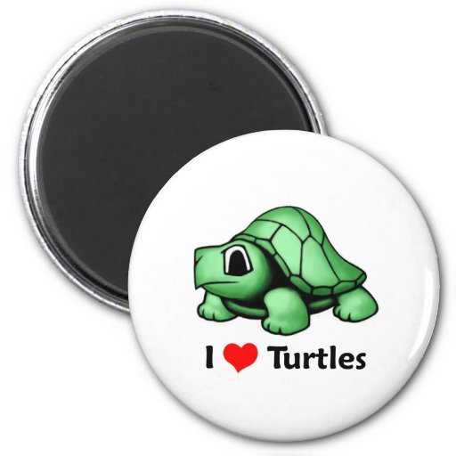 Amo tortugas imanes