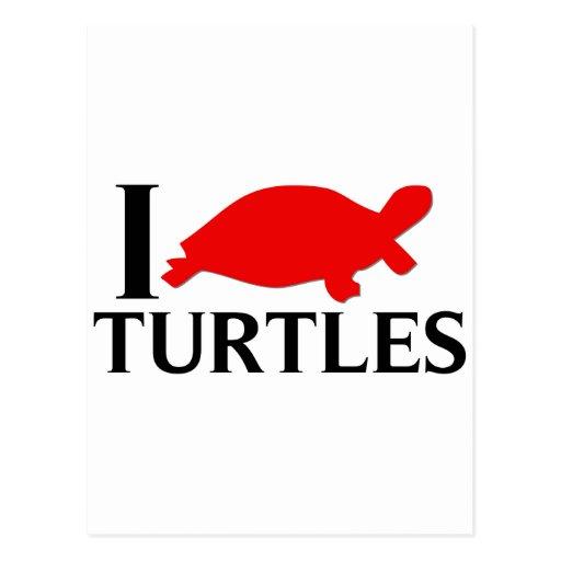 Amo tortugas postal