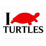 Amo tortugas postales
