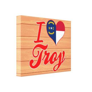 Amo Troy, Carolina del Norte Impresiones De Lienzo
