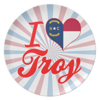 Amo Troy, Carolina del Norte Plato Para Fiesta