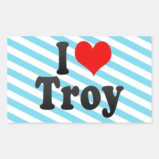 Amo Troy Rectangular Pegatina
