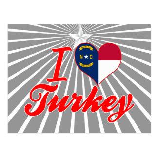 Amo Turquía, Carolina del Norte Postal