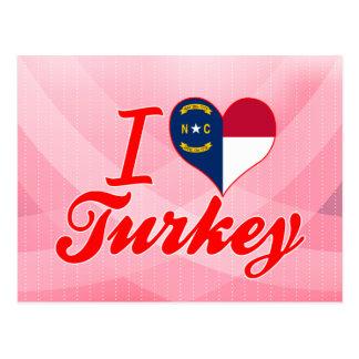 Amo Turquía, Carolina del Norte Tarjeta Postal