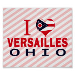 Amo Versalles, Ohio Poster