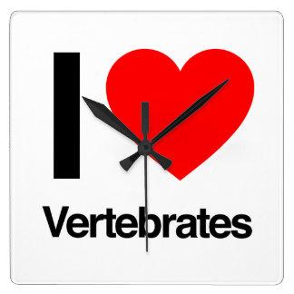 amo vertebrados relojes