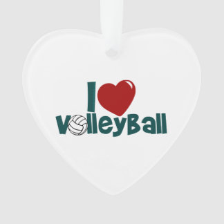 Amo voleibol