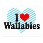 Amo Wallabies Postal