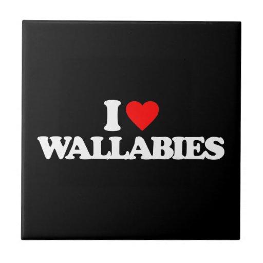 AMO WALLABIES TEJAS