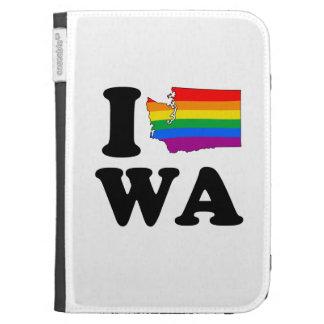 AMO WASHINGTON GAY