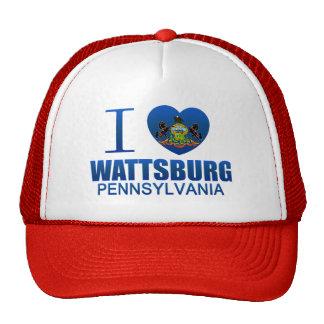Amo Wattsburg, PA Gorros
