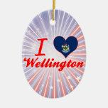 Amo Wellington, Maine Ornamentos Para Reyes Magos