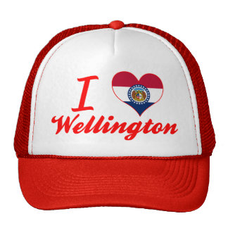 Amo Wellington, Missouri Gorro De Camionero