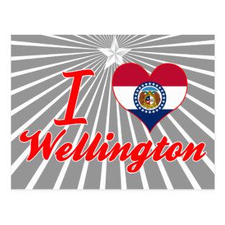 Amo Wellington, Missouri Postal