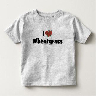 Amo Wheatgrass Camisas