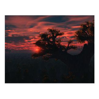 Among The Ancients Postcard