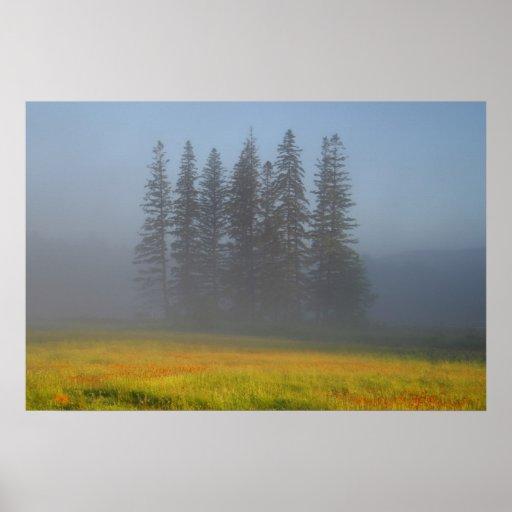 Among The Haze Poster