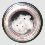 Amontonado en el tubo (pegatina) pegatina redonda