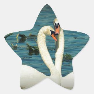 Amor 2 del cisne pegatina en forma de estrella