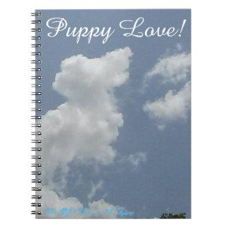 ¡Amor adolescente! Note Book