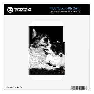 Amor adolescente de Jack Calcomanías Para iPod Touch 4G