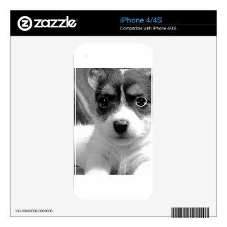 Amor adolescente de Jack iPhone 4S Skins