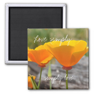 Amor anaranjado de la elegancia simplemente imanes de nevera