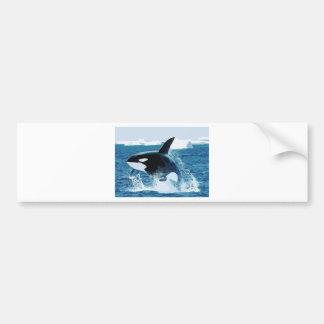 Amor animal de la paz de los pescados del océano pegatina para coche