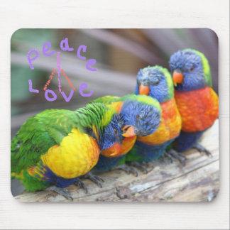 Amor colorido Mousepad de la paz de los loros