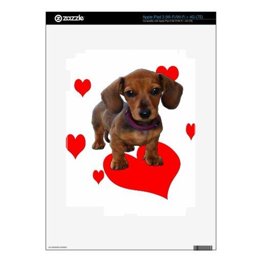 Amor (corazones) Dachsies - Dachshund iPad 3 Skins